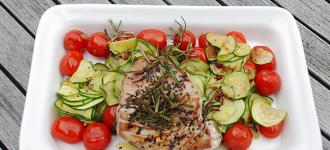 Thunfisch-auf-Zucchini-mit-Tomaten